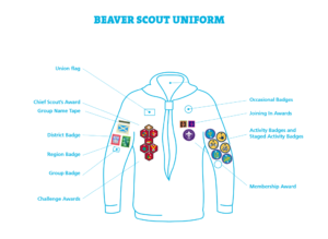 badge-positions-beavers